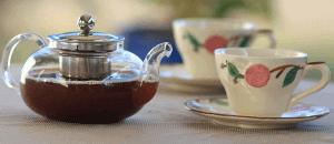 紅茶資格で学べること